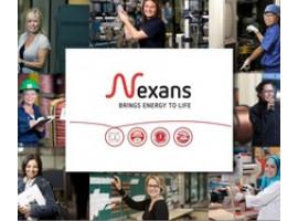 """""""Женщины в Nexans"""" — программа по развитию женского лидерства"""